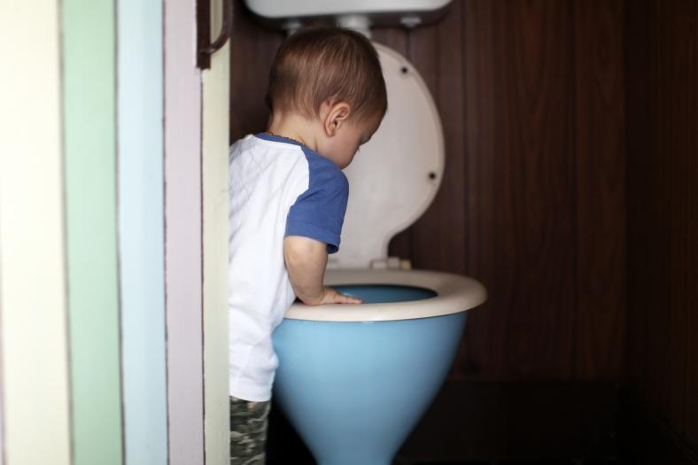 Toilet Fascination